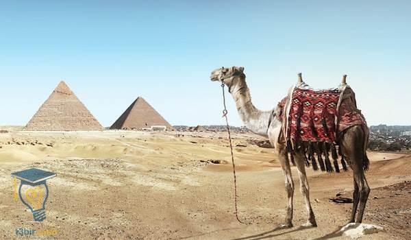 موضوع تعبير عن رحلة الى الاهرامات