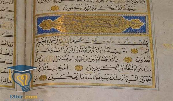 موضوع تعبير عن اللغة العربية بالعناصر