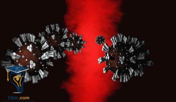 بحث عن الفيروسات في علم الاحياء