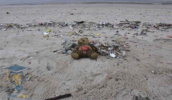 بحث علمي عن التلوث البيئي