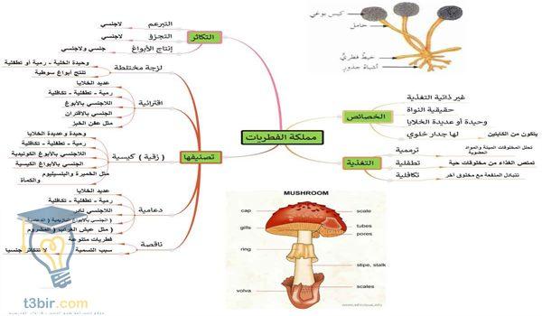 علم الأحياء للصف الأول الثانوى